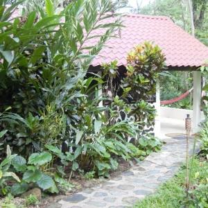 belize-jungle-lodge-07