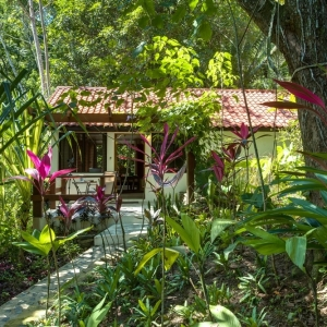 belize-jungle-lodge-25