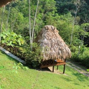 belize-jungle-lodge-35