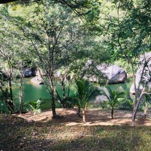 belize-jungle-lodge-36