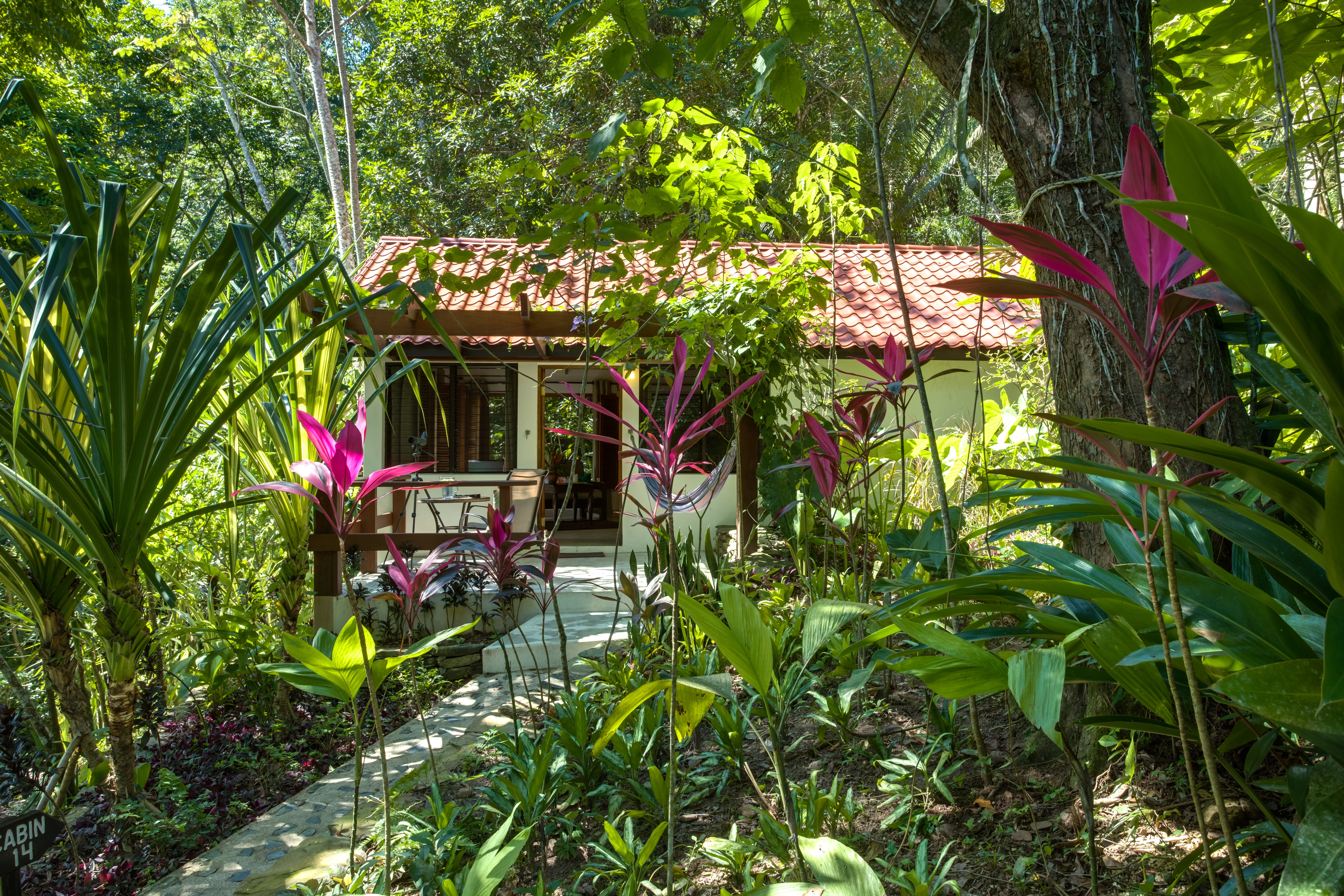 Belize Jungle Accommodations